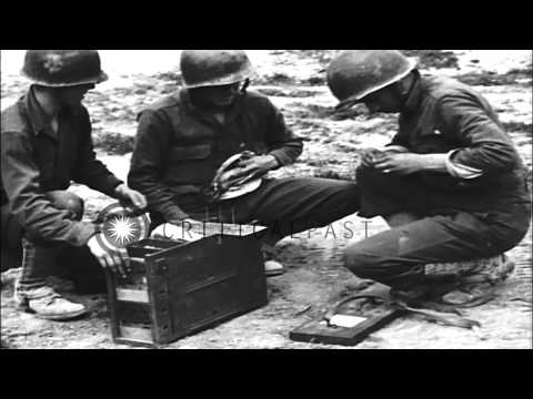 US soldiers of the 1st Signal Corps release messenger pigeons in Tunisia, North A...HD Stock Footage