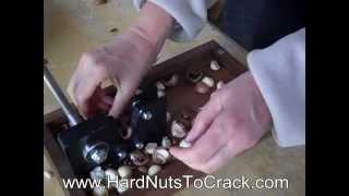 Black Walnut & Macadamia Nut Nutcracker - Www.hardnutstocrack.com