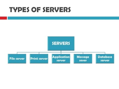 Different small business servers
