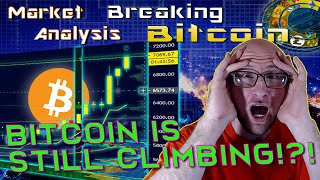 Bitcoin's Parabolic Movement Breakdown - Altcoin Market Surges - What Are We Buying?  Live Analysis