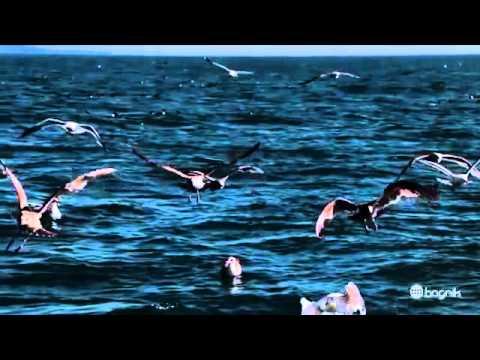 Music video Ярмак - Моя планета