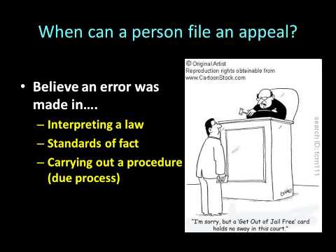 Day 33 Nebraska Court of Appeals and US Circuit Process