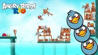 Angry Birds Rio - Rovio Entertainment Ltd 2 HIDDEN HARBOR Level 1-6