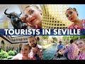Download Vlog #35 - Sevilia | Bullring, Metropol Parasol, Alcazar, Plaza de Espana