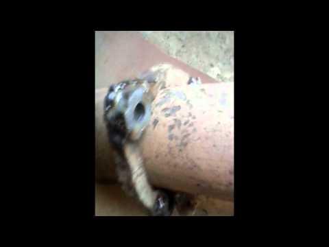 ауди 80 б3 глушитель ремонт - YouTube