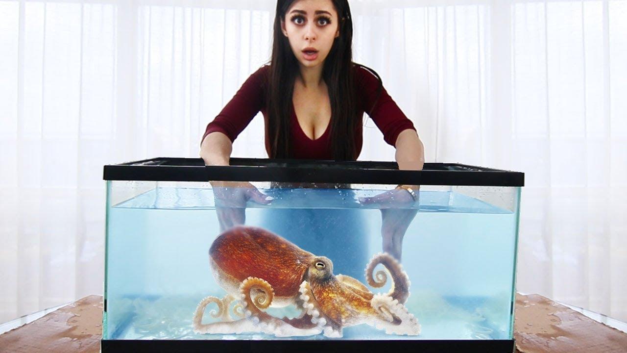 whats-in-the-box-challenge-underwater-aquarium-version
