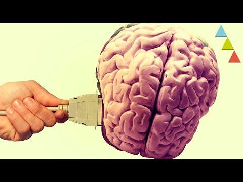 Internet ¡ha cambiado tu cerebro!