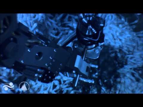 FK008 - Nereus Dive 55  PART II - Oases 2013 - 21 June