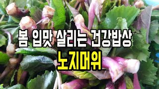 봄 입맛 살리는 건강밥…