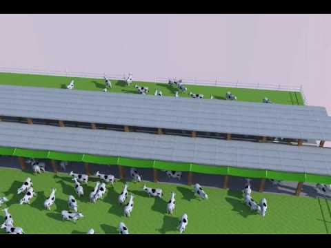 Globdal Dairy Solutions Special Project Designs Sultan Dairy Farm Youtube
