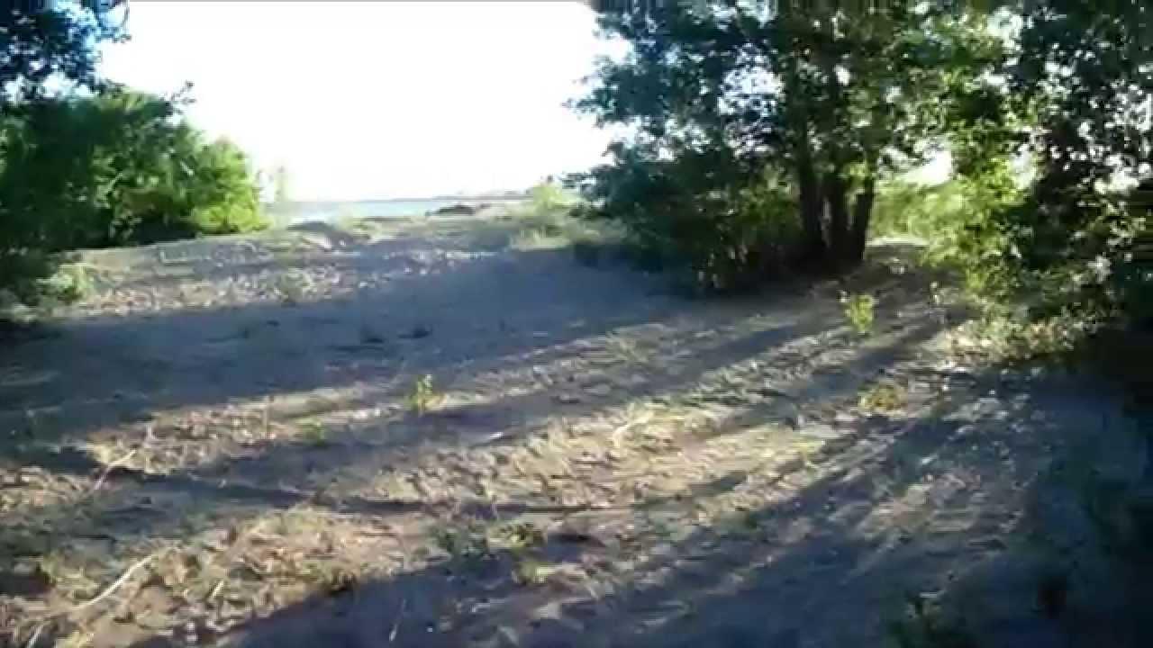 База отдыха бухтарминская лилия новотимофеевка