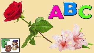 Fairy alphabet /  ABC songs/ flowers, part 1 /  Nursery Rhymes / cartoon for kids, children/FS