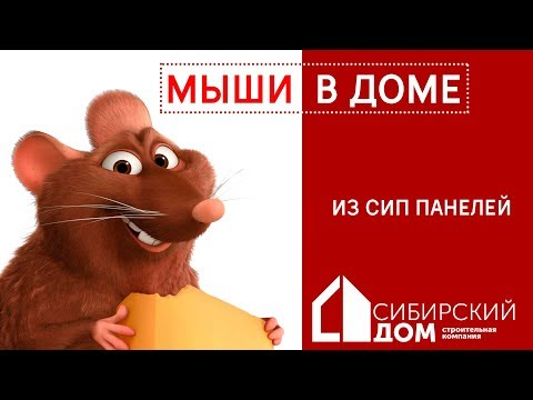 видео: Мифы о мышах в домах из СИП панелей