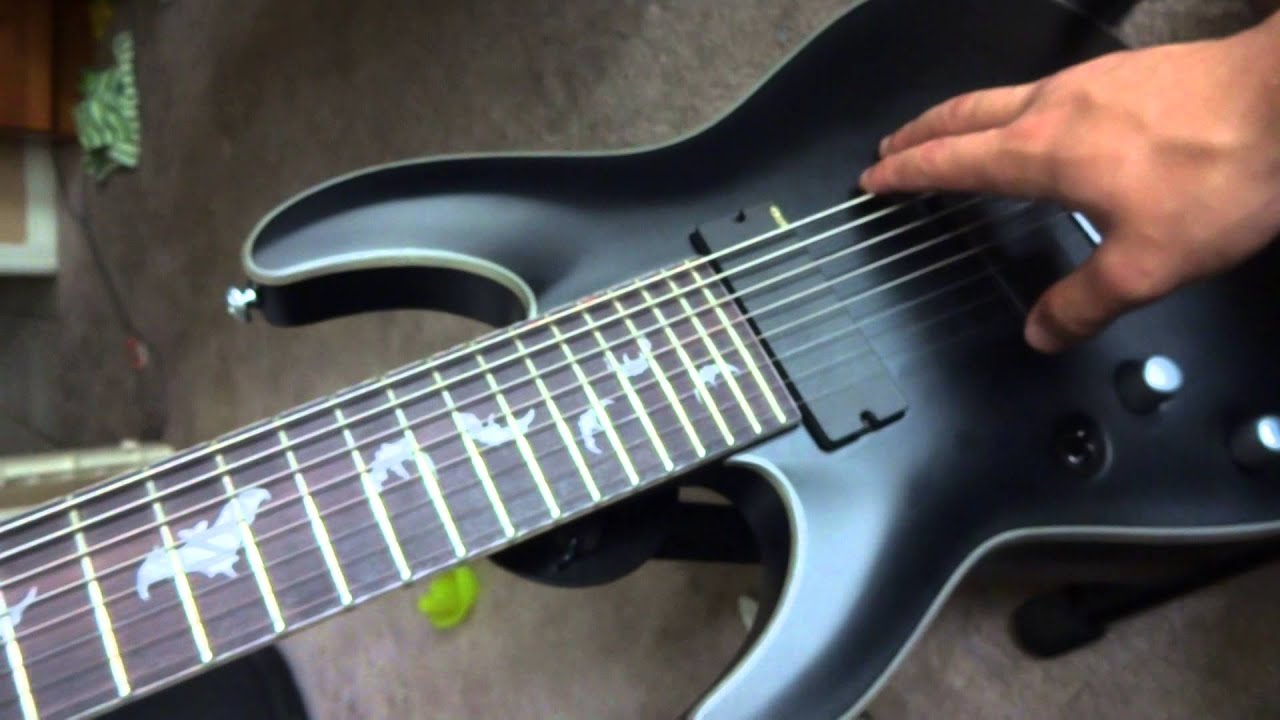 the best 8 string guitar youtube