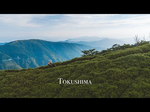 Solo travelling through the Iya Valley, Japan 4K