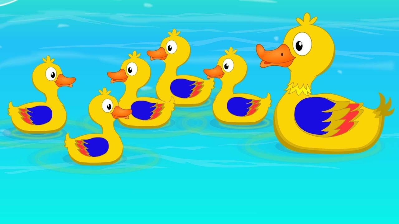 Five Little Ducks Went Swimming One Day   Children's Song ...