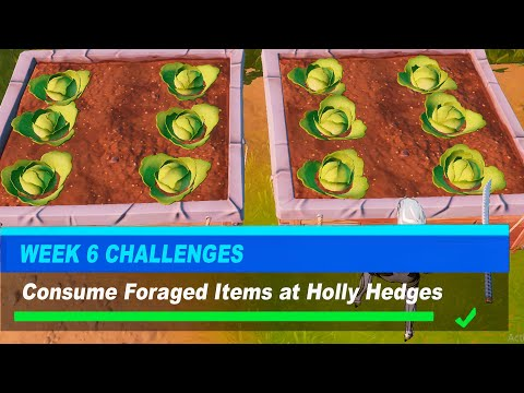 Consume Foraged Items at Holly Hedges Fortnite - Week 6 Challenges