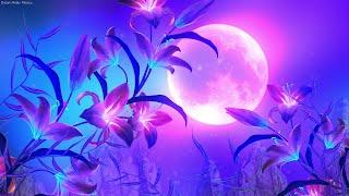 Beautiful Relaxing Sleep Music   Deep Sleep Music in 6 Minutes