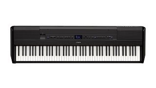 Yamaha P-515 Portable Keyboard | Everything You Need to Know