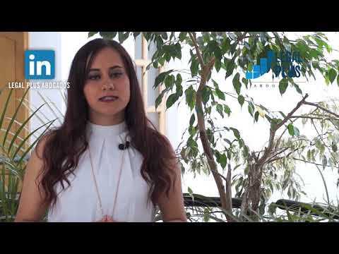 Abogados Penales en Bogotá- Legal Plus Abogados