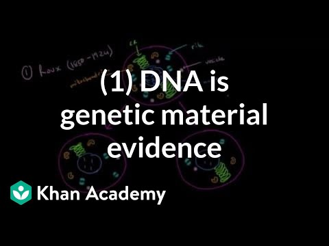 Evidence that DNA is genetic material 1 | Biomolecules | MCAT | Khan Academy