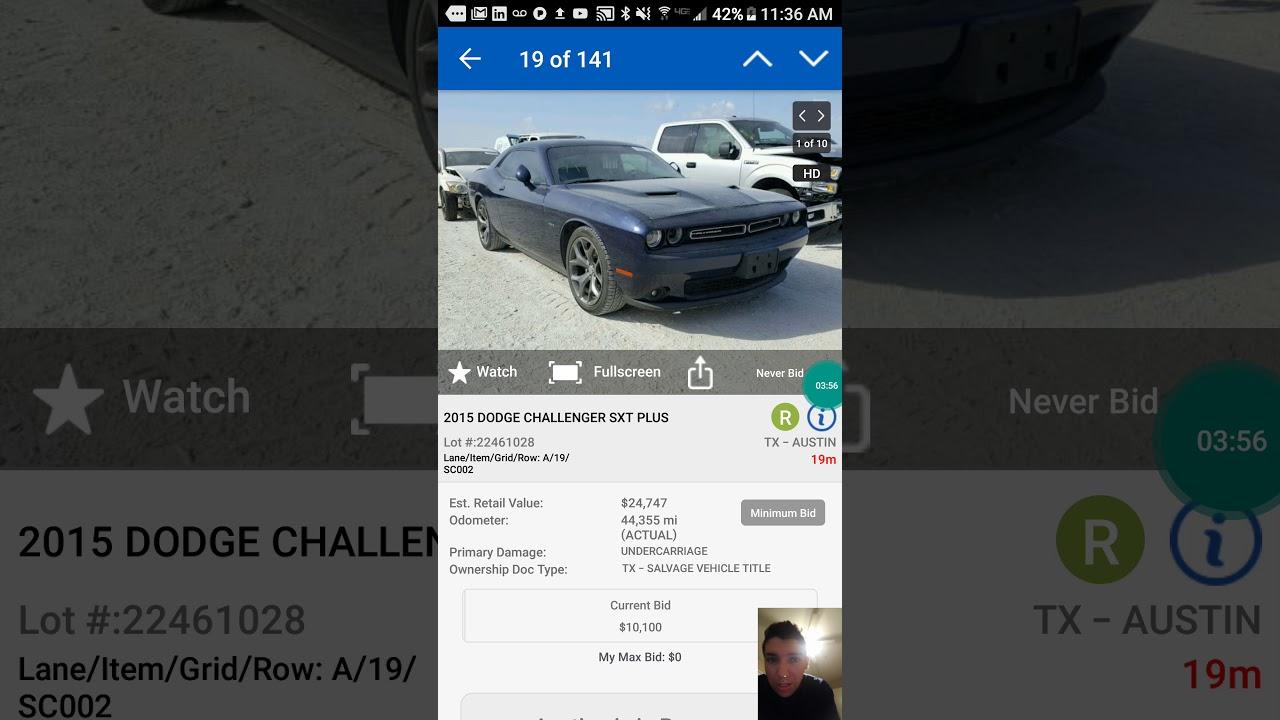 cars bid