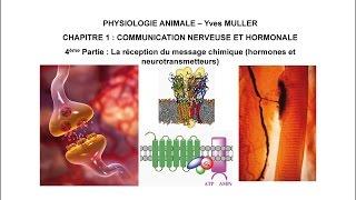 Chapitre 1-4 La réception du message chimique (hormones et neurotransmetteurs)
