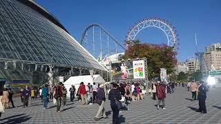 桑田佳祐 LIVE TOUR 2017 がらくた 東京ドームの様子を撮影しました。