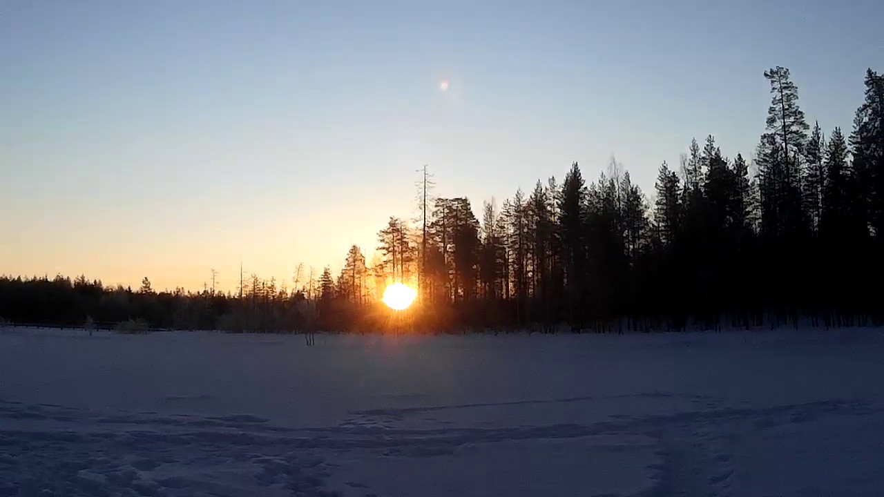 Auringon