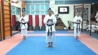 Μαθήματα Καράτε