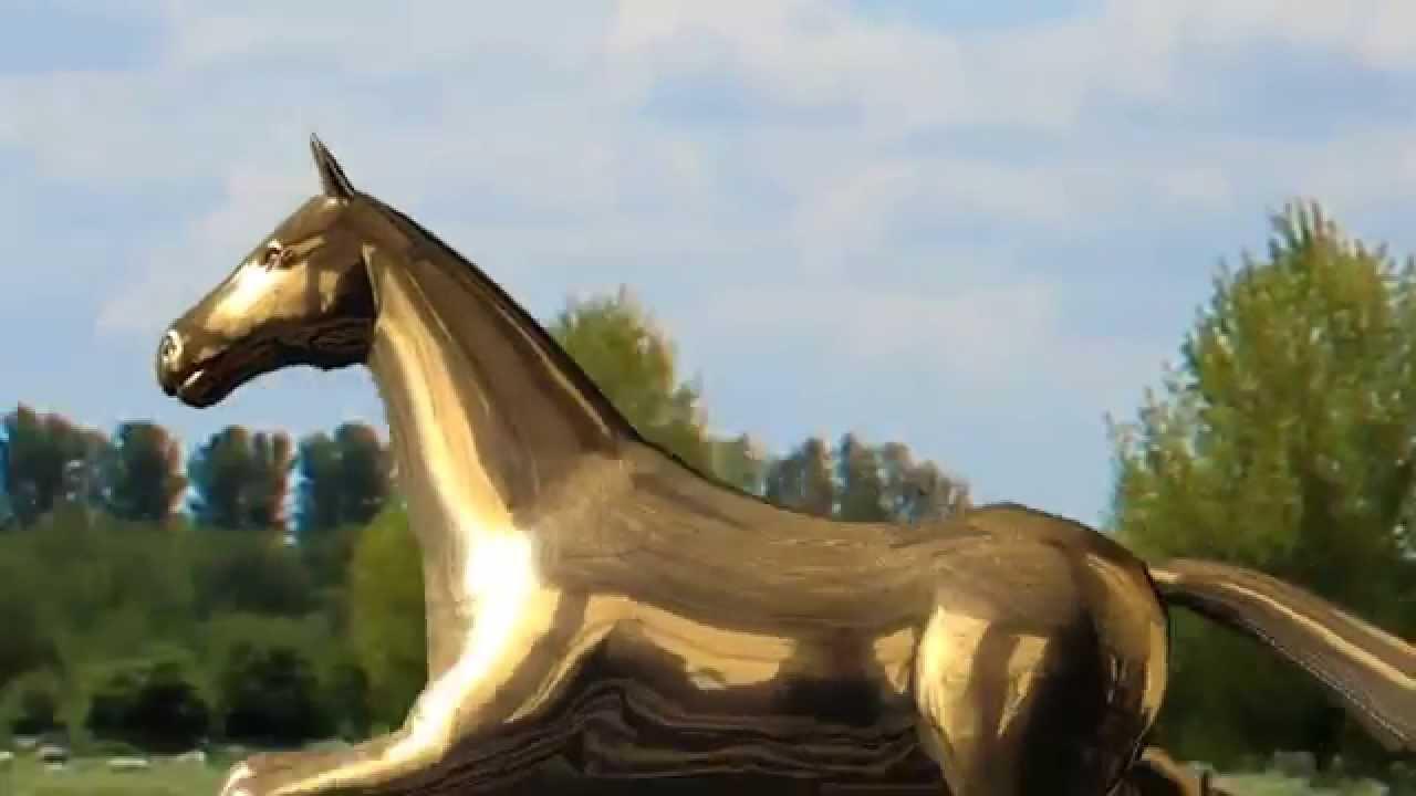 Hd 3d Golden Horse Running Video Free Downloads Youtube