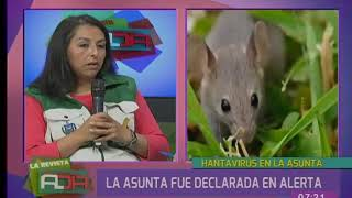 Declaran alerta en La Asunta por hantavirus