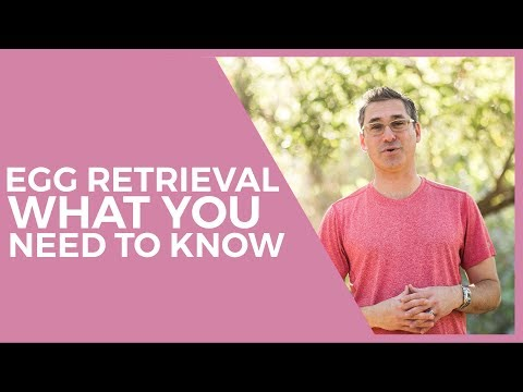 what-you-need-to-know-before-ivf-egg-retrieval
