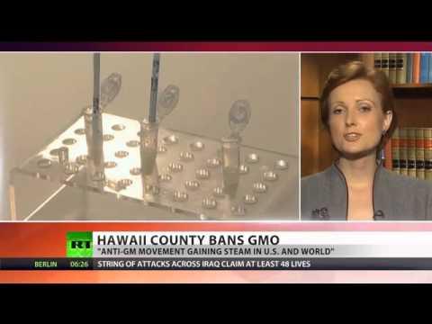 GMO Free Hawaii  'Big Island' bans biotech companies