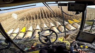 New Holland CR 10.90 - CAB VIEW | Corn Harvest 2018 | Mais Dreschen 2018