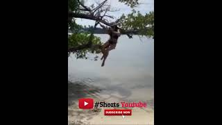 Best Fails Of The Year So Far 2021 part 3 #Shorts