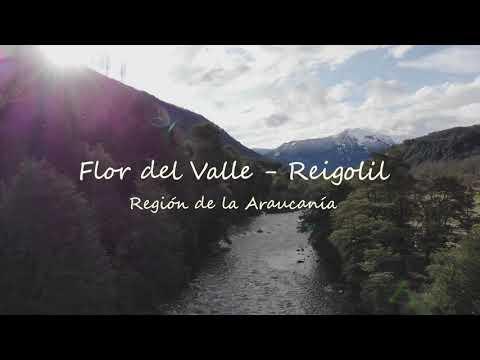 Volcanes Araucanía -  Flor del Valle / Reigolil