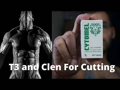 T3 ( Cytomel) and Clenbuterol For Fat Loss In Hindi