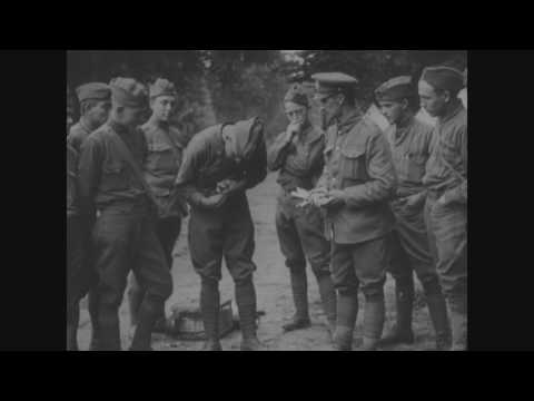 The Somme Offensive Operations, August 8-21, 1918, 33rd and 80th Divisions