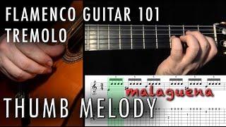 Flamenco Guitar 101 - 22 - Tremolo Thumb Melody - Malaguena