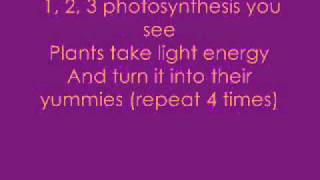 charissa's and Danielle's photosynthesis song