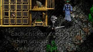 Linkrealms MMORPG Pet Roosters
