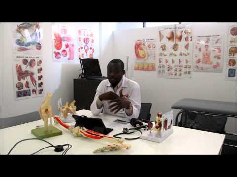 Ben Asmah : How to get clinical rotation for medical student in Australia, USA and other countries