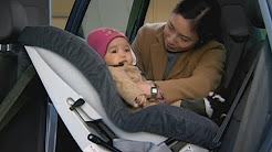 AAA NYS Car Seat Laws Are Lagging