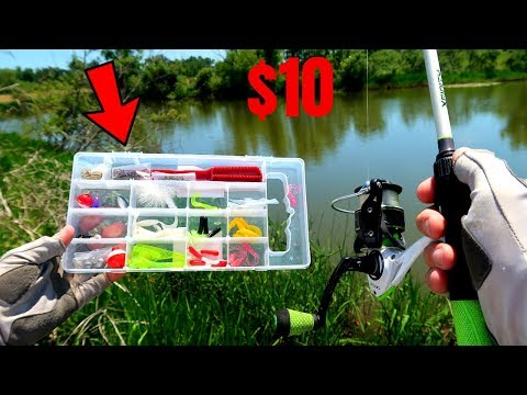 $10 Fishing Kit MULTI SPECIES Challenge (Unexpected Fish Catch!)