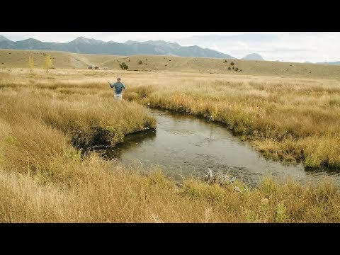 Wild Trout - A Montana Fish Story - Trout Unlimited