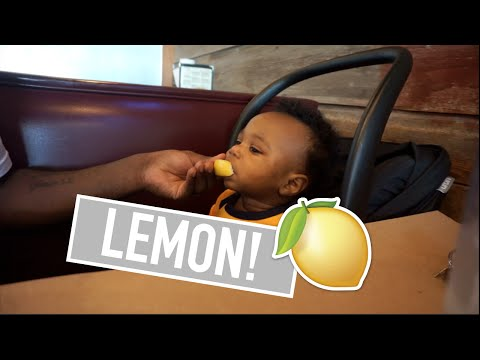 BABY'S FIRST LEMON - vlog #57