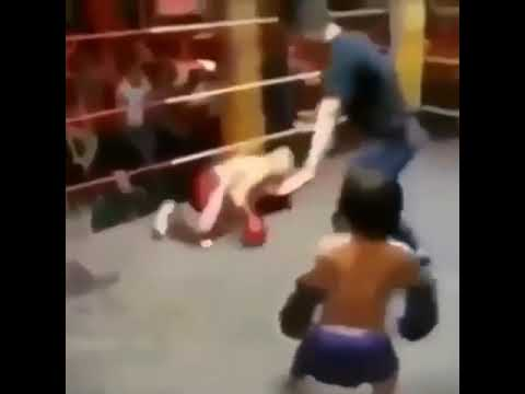 Download Two midgets fight