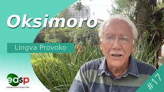 Lingva Provoko n-ro 17 (Oksimoro)