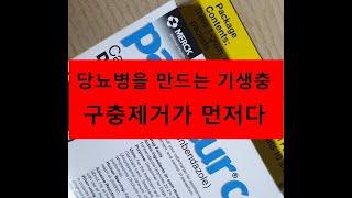 당뇨병  펜벤다졸 복용4주차.심한 등부위 통증